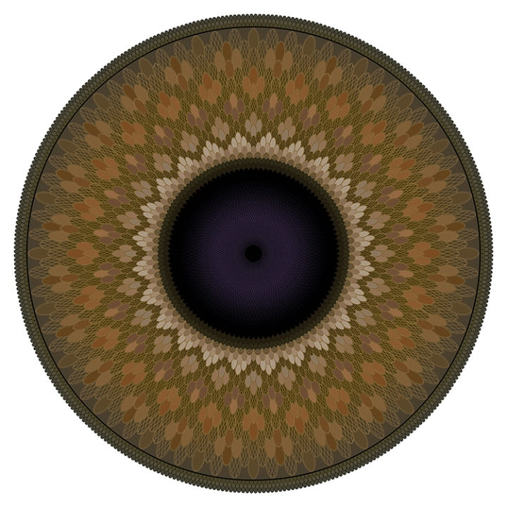 brown Iris res