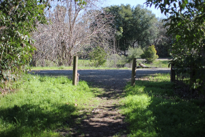 Waking up in California, blameitonart (2)